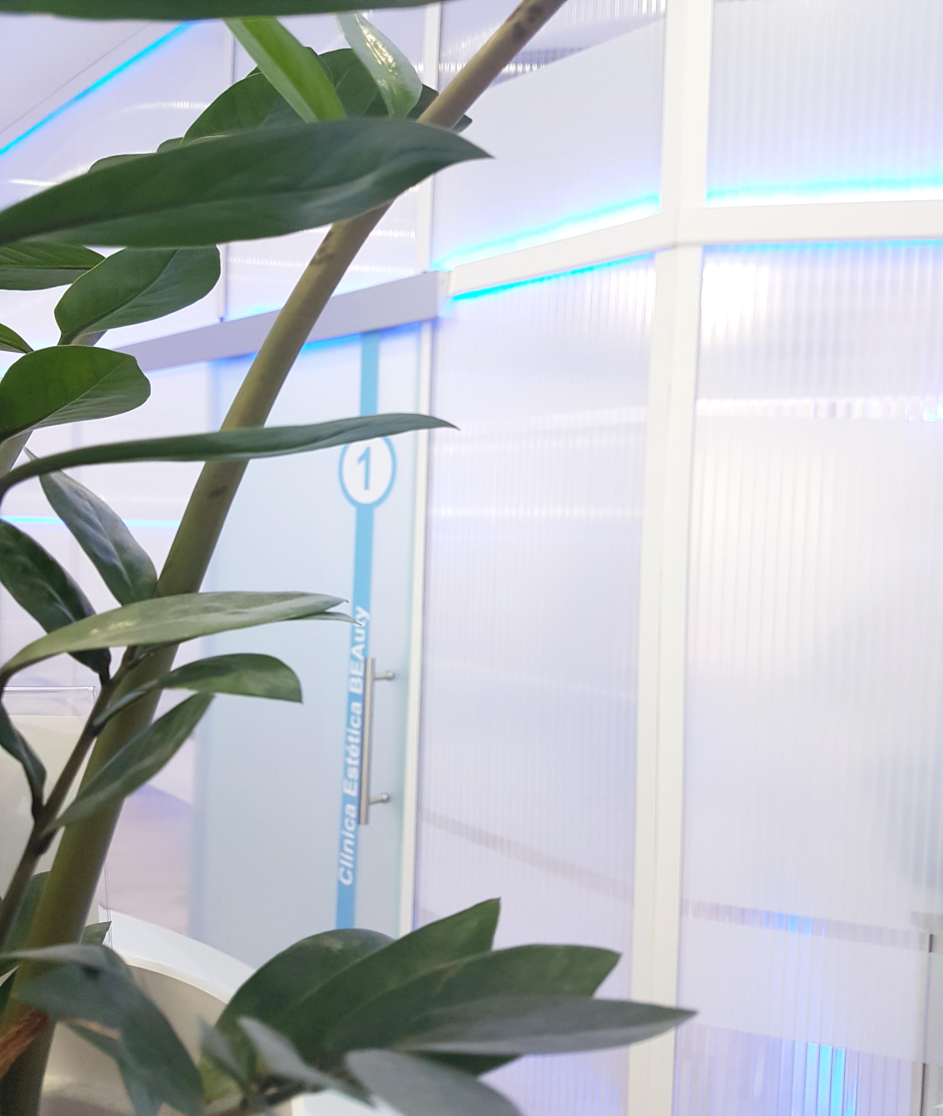 Clinica Estética Marbella, Micropigmentación Capilar en Marbella rejuvenecimiento facial sin cirugía reducción arrugas Marbella, relleno arrugas Marbella  belleza Marbella. Corrección las arrugas Marbella, eliminacion arrugas Marbella arrugas borrar Marbella. Tratamiento de arrugas Marbella, Marbella - corrección las arrugas. Liposucción sin cirugía Marbella, blefaroplastia Marbella. Aumento labios Marbella, relleno facial Marbell Eliminación ojeras Marbella. Tratamiento celulitis marbella, rejuvenecimiento facial Marbella. Estrías Marbella, rejuvenecimiento Marbella. IMG_20180906_185651 CLINICA ESTÉTICA MARBELLA BEAuty